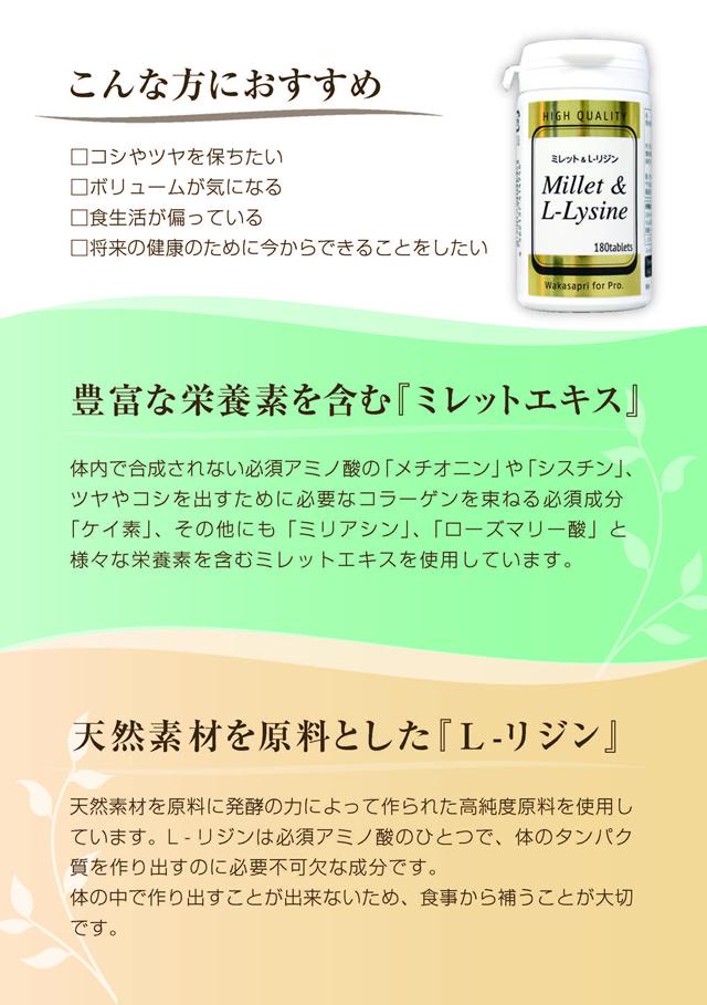 【A5チラシ】ミレット&Lリジン_ページ_2